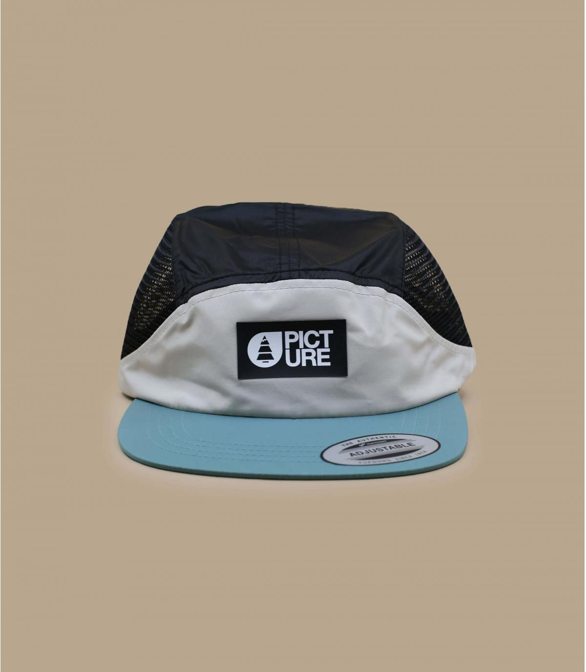 Picture5 panel mesh