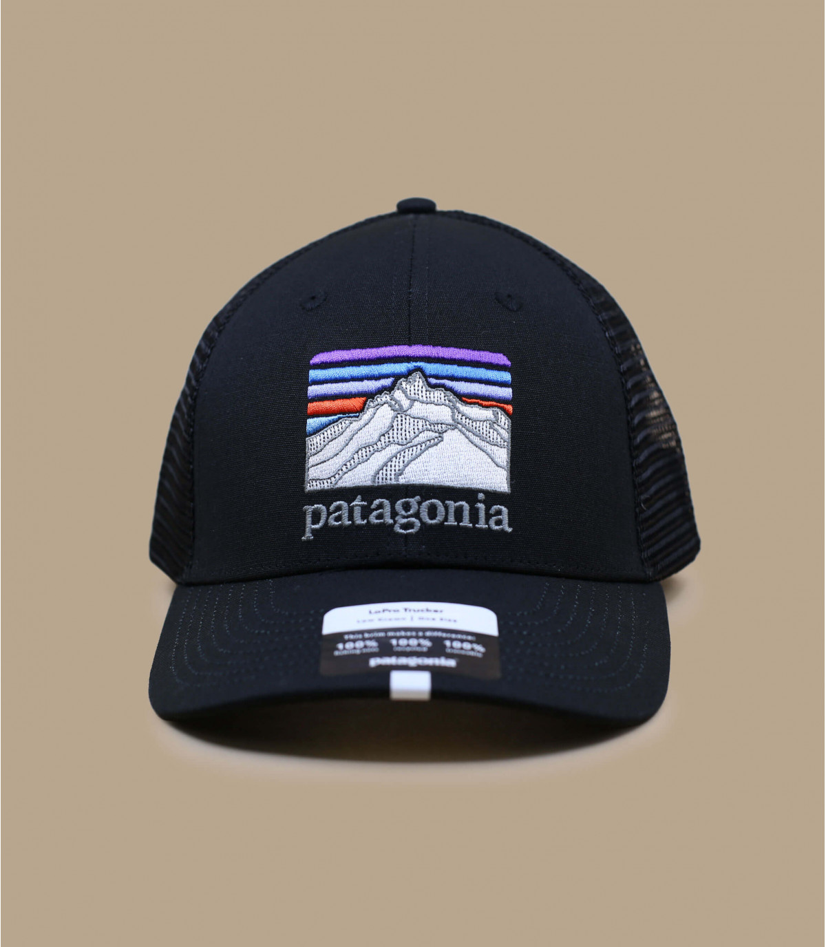 black Patagonia trucker